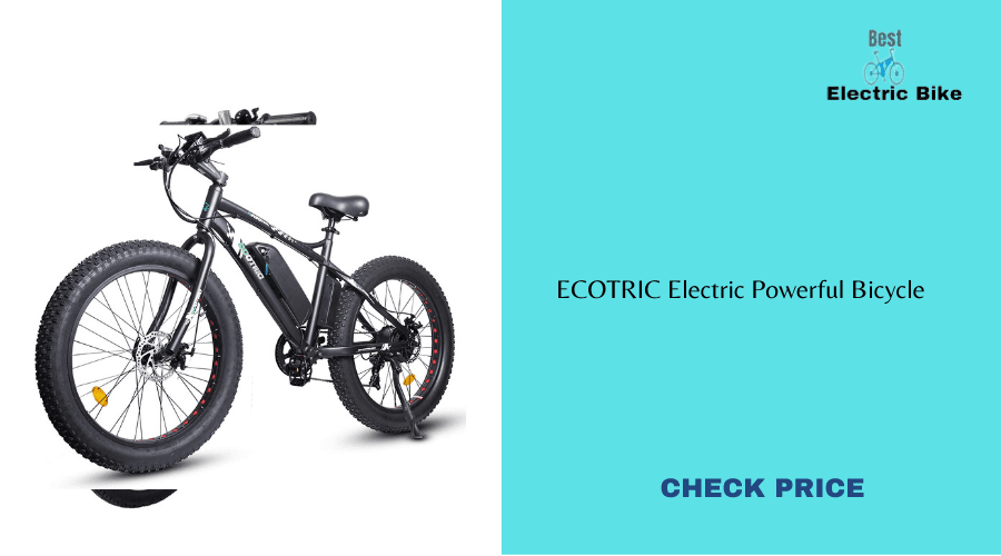 Best electric bike 2021